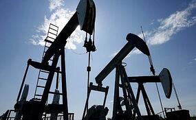 PDO  plans to invest more than US$20bn to sustain its long-term hydrocarbon output